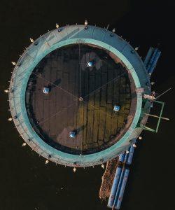 zlotuptaka-filmowanie-fotografia-bielikstudio- bielikdrony-lodzkie-warszawa-lodz-usługi-dronem-pomiar-jakosci-powietrza-termowizja-6